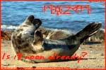 Thumbnail of a stretching seal postcard.