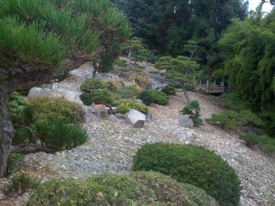 A Japanese rock garden.
