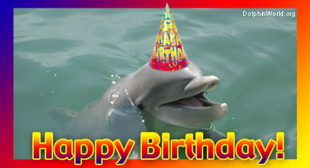 A dolphin wishing me happy birthday.