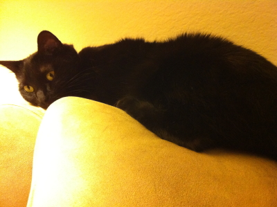 Keli reclining.